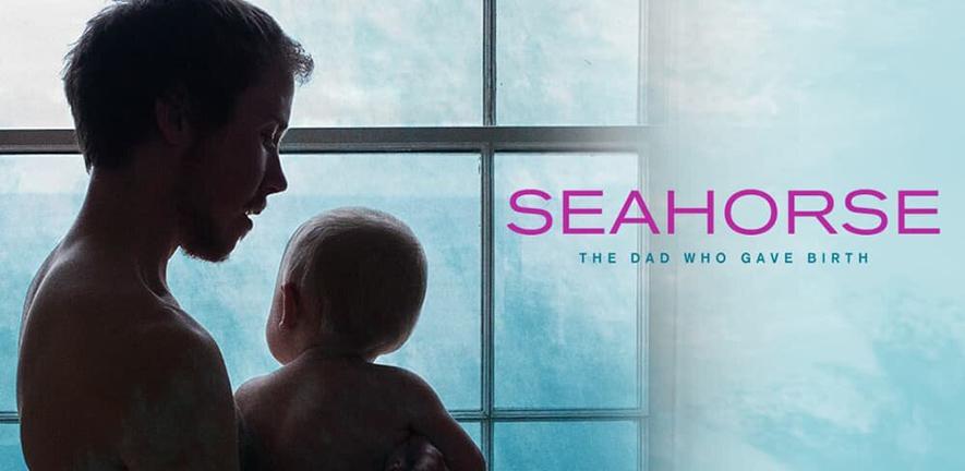 Seahorse film poster