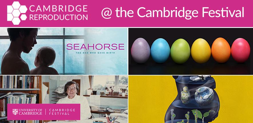 Cambridge Festival 2021