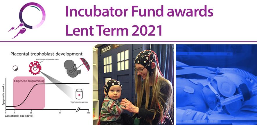 Incubator Fund awards 2021